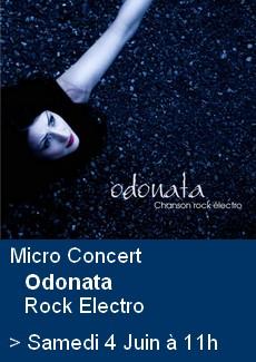 Micro Concert chanson rock electro