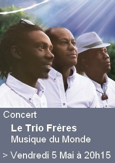 Concert Musique du Monde