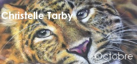 Exposition Christelle Tarby