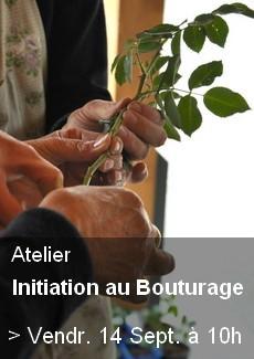 Atelier Bouturage
