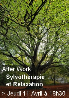 After Work - Sylvothérapie et Relaxation