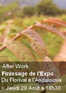 After Work : Finissage d'Exposition